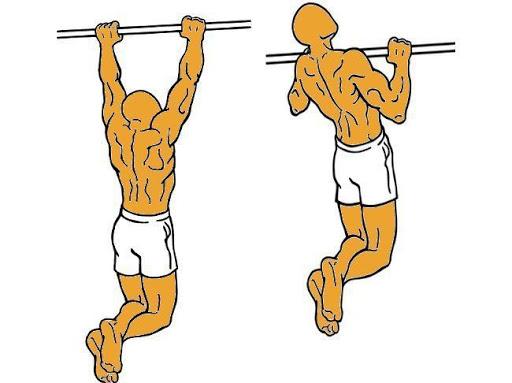 ejercicios en barra