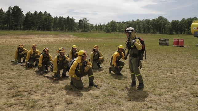 guardias forestales