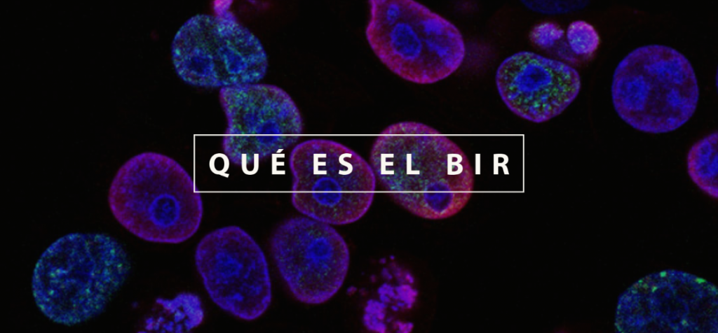 Qué es el BIR Biólogo Interno Residente
