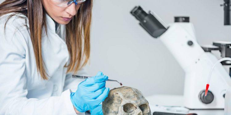 Sueldo de un Técnico en Anatomía Patológica