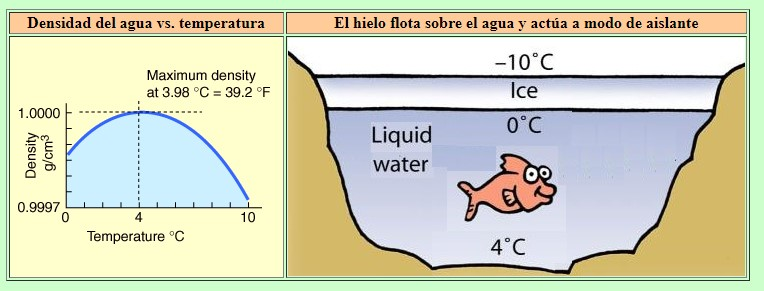 calcular densidad del agua